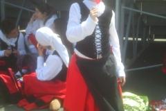 Dantzari ttiki 2014-05-08